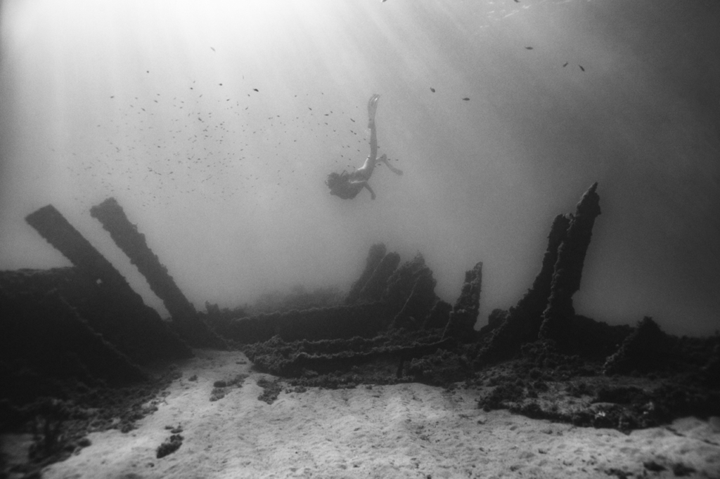 CARLES CARABÍ The Wreck